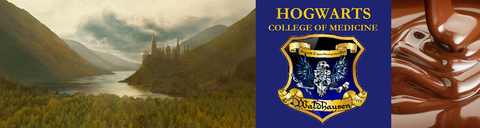 Life at Hogwarts College of Medicine